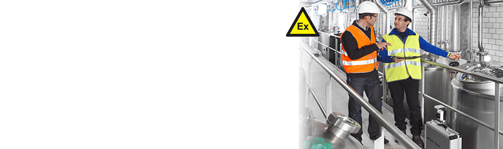 Hazardous-Area Equipment Services